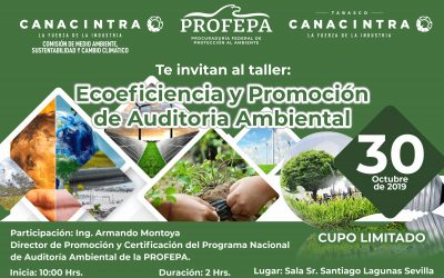 Ecoeficiencia y Promoción del Programa de Auditoría Ambiental